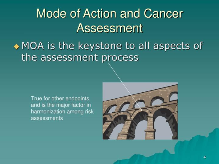 Mode of Action and Cancer Assessment