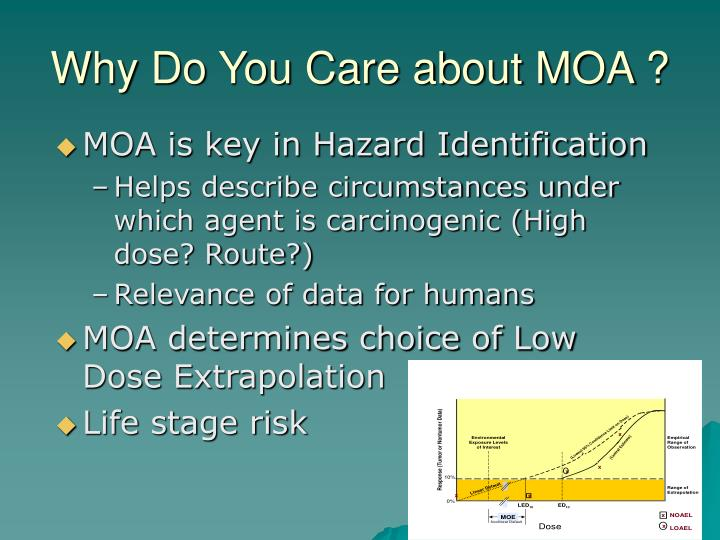 Why Do You Care about MOA ?