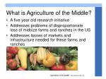 what is agriculture of the middle
