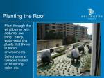 planting the roof
