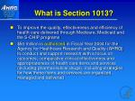 what is section 1013