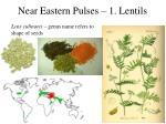 near eastern pulses 1 lentils1