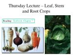 thursday lecture leaf stem and root crops