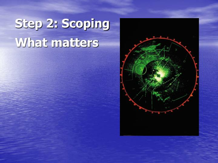 Step 2: Scoping