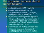 rol supresor tumoral de c l mioepiteliales