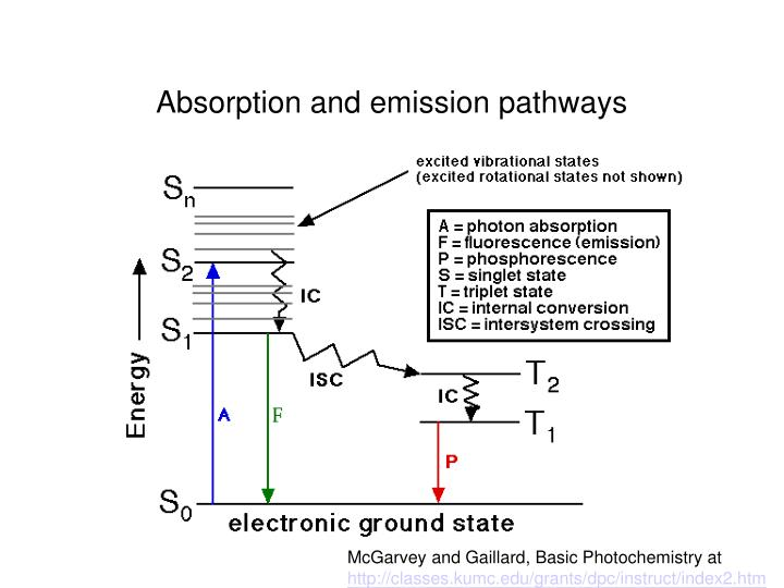 Absorption and emission pathways