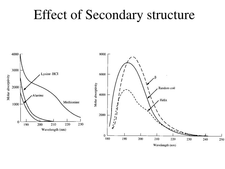 Effect of Secondary structure