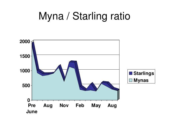 Myna / Starling ratio