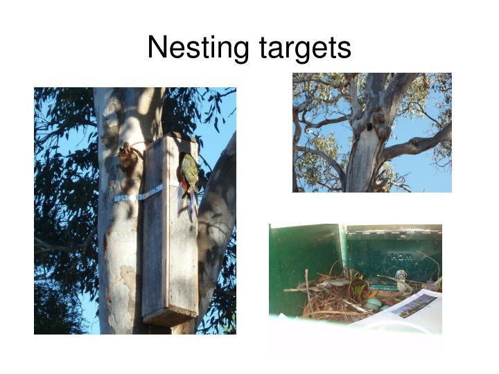 Nesting targets