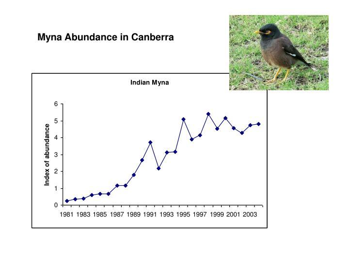 Myna Abundance in Canberra