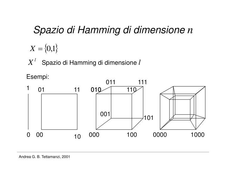 Spazio di Hamming di dimensione