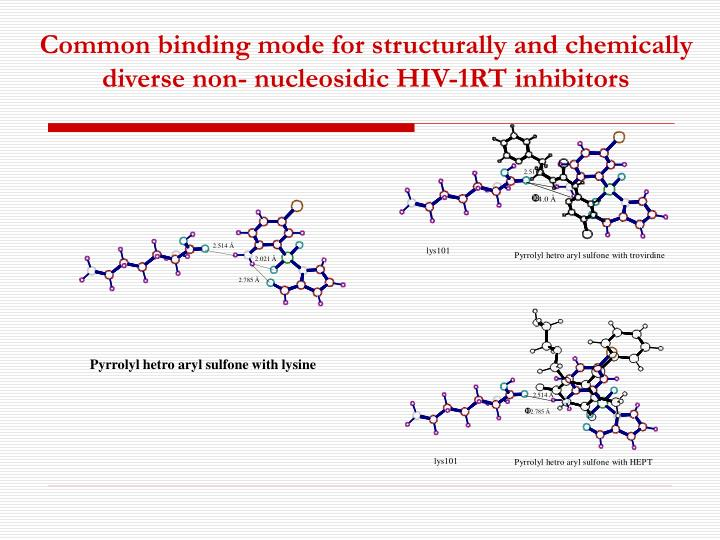 Common binding mode for structurally and chemically diverse non- nucleosidic HIV-1RT inhibitors