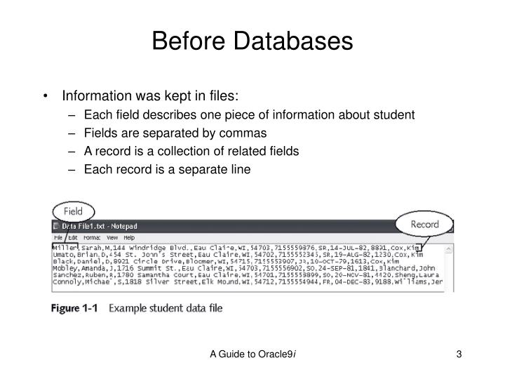 Before databases