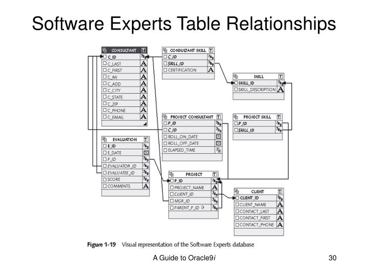 Software Experts Table Relationships