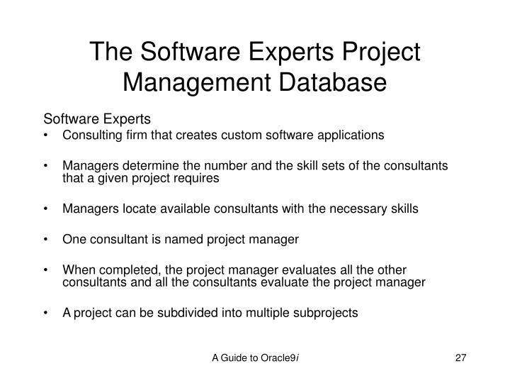 The Software Experts Project Management Database