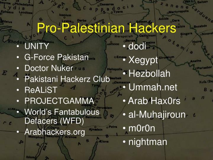 Pro-Palestinian Hackers