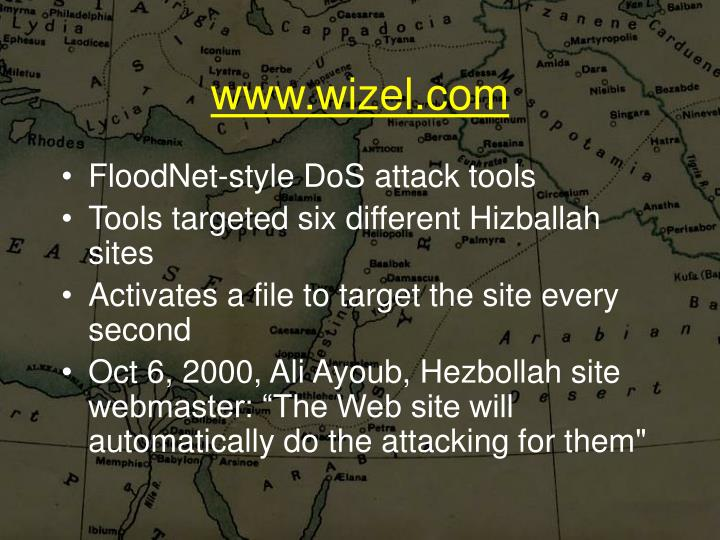 www.wizel.com
