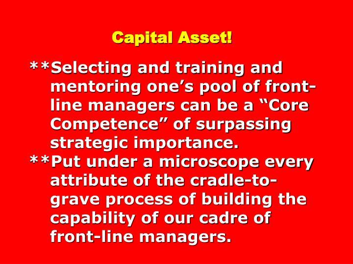 Capital Asset!