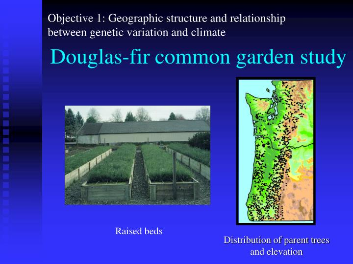 Objective 1: Geographic structure and relationship between genetic variation and climate