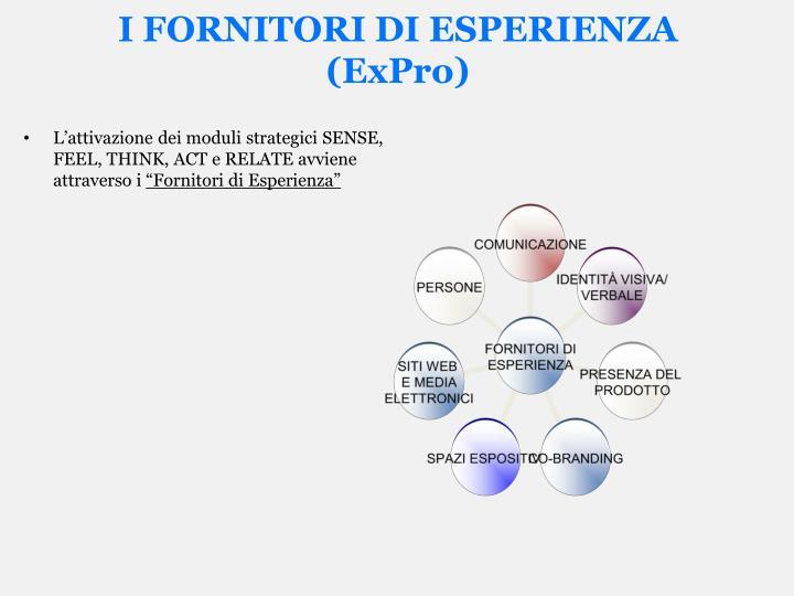 I FORNITORI DI ESPERIENZA (ExPro)