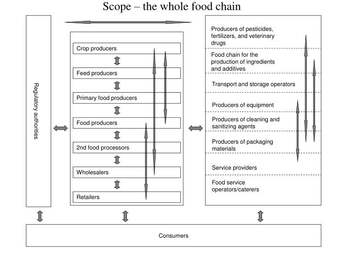 Scope – the whole food chain