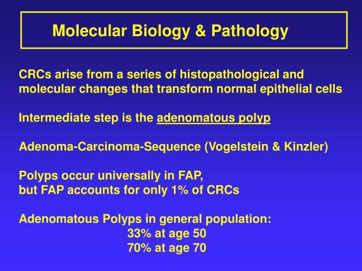 Molecular Biology & Pathology