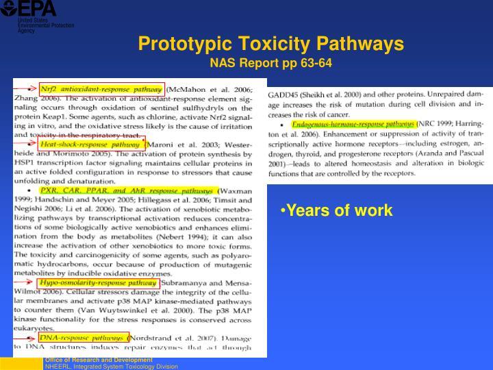 Prototypic Toxicity Pathways