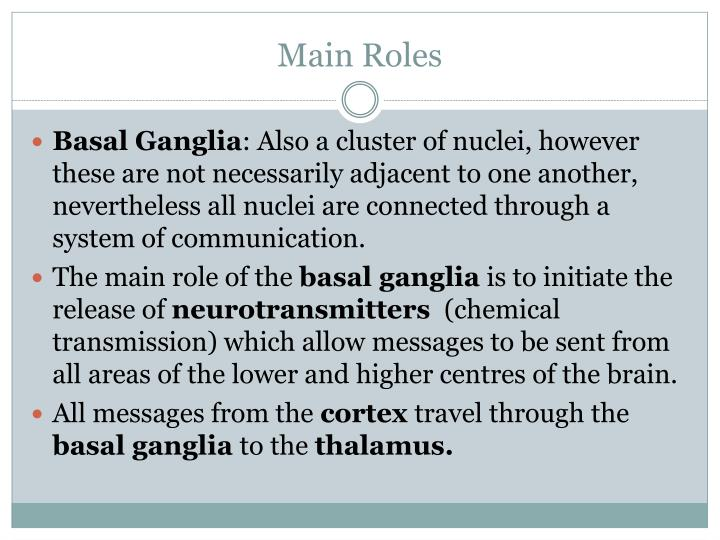 Main Roles