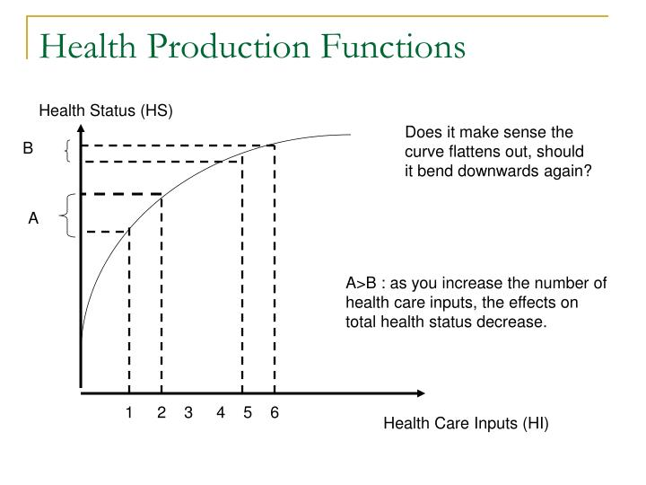 Health Production Functions