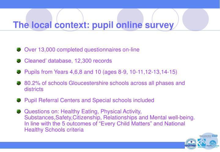 The local context: pupil online survey