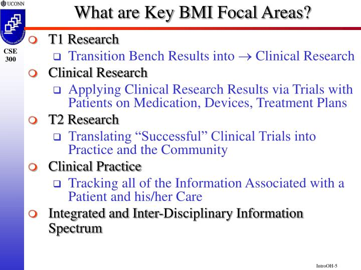 What are Key BMI Focal Areas?