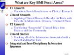what are key bmi focal areas