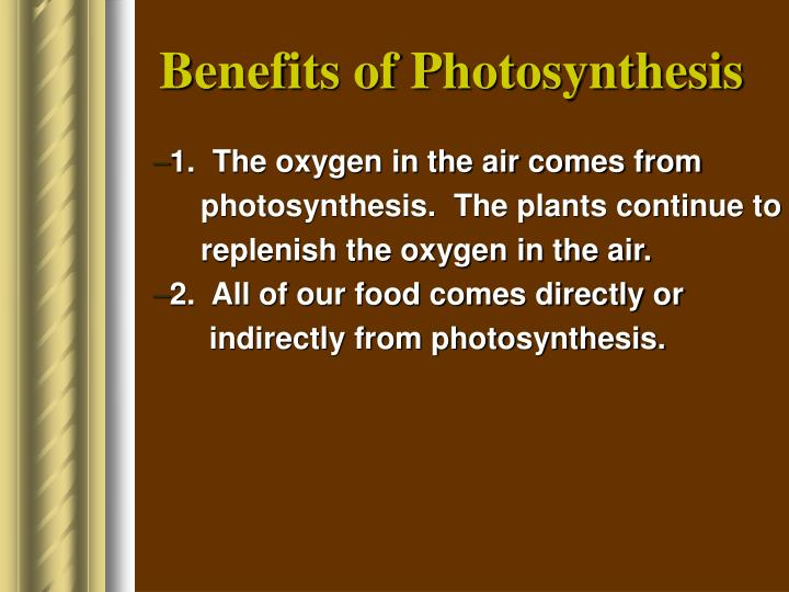 Benefits of Photosynthesis