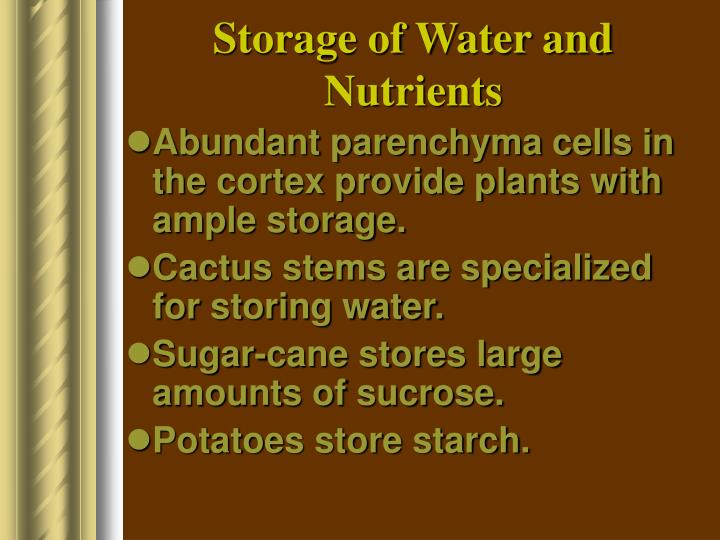 Storage of Water and Nutrients