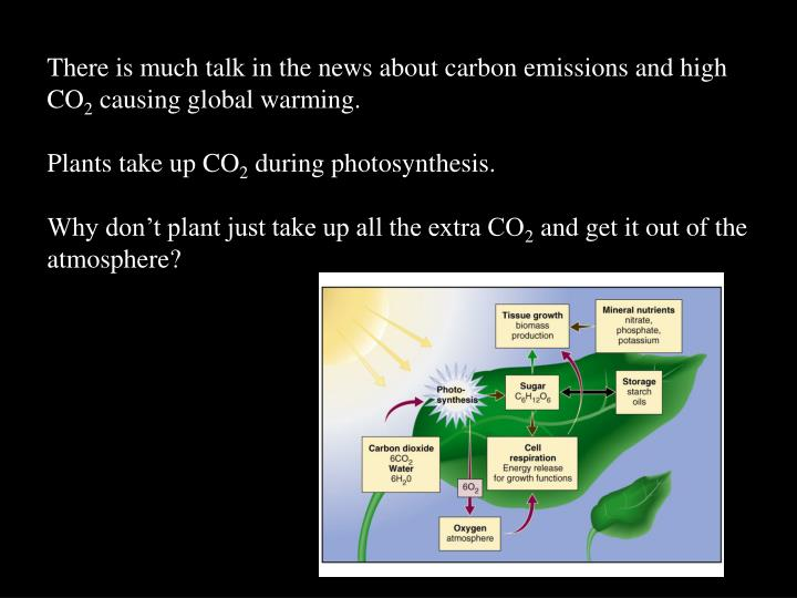 There is much talk in the news about carbon emissions and high CO