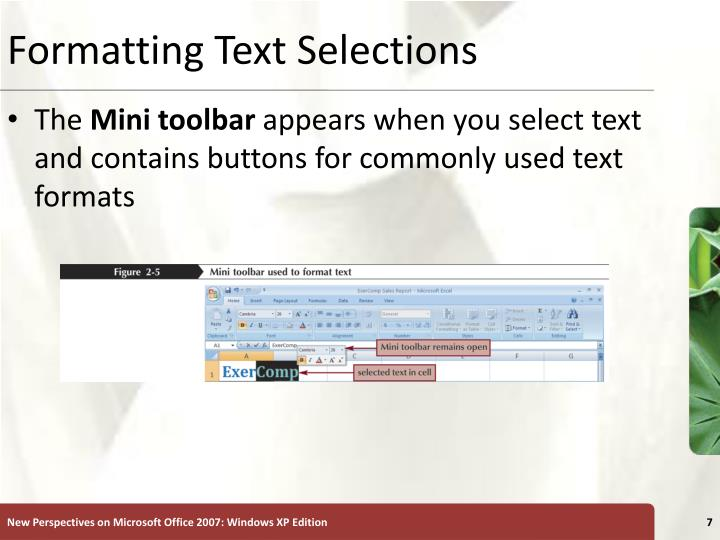 Formatting Text Selections