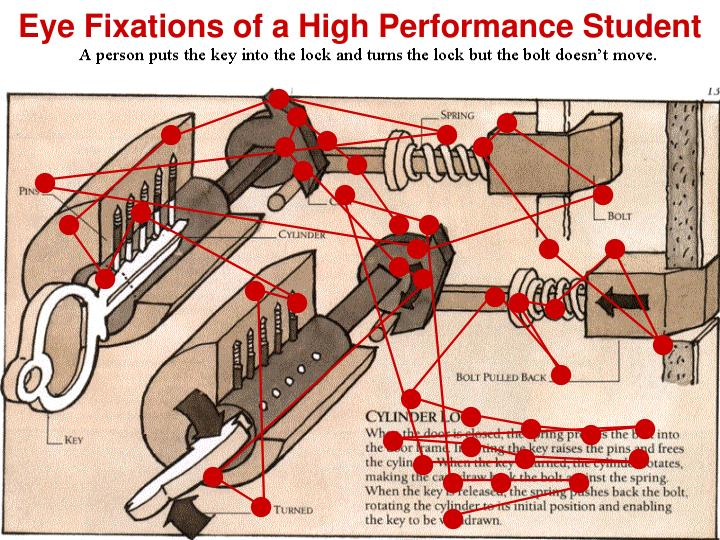 Eye Fixations of a High Performance Student