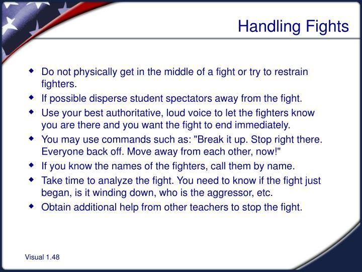 Handling Fights