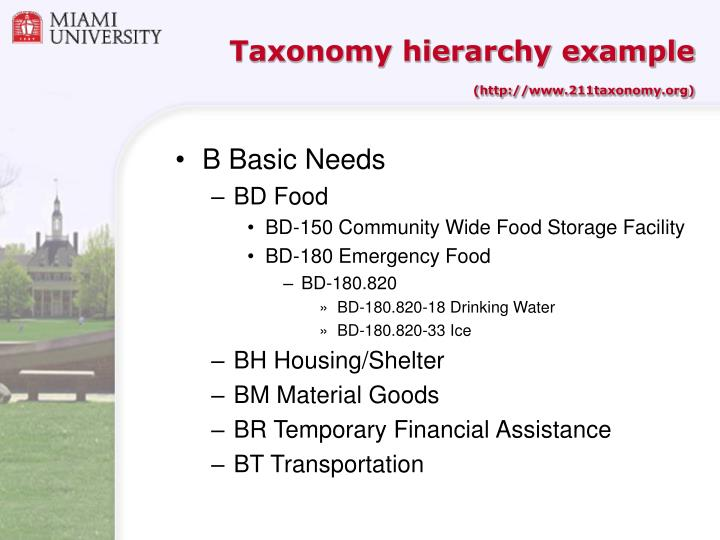 Taxonomy hierarchy example