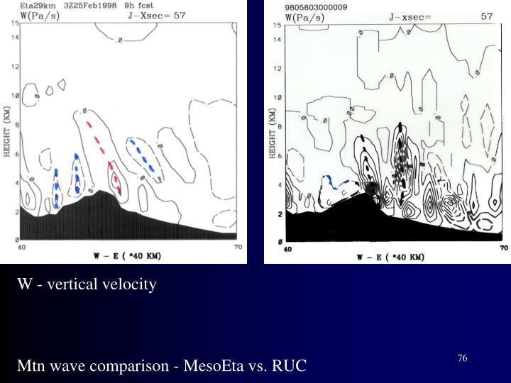 W - vertical velocity