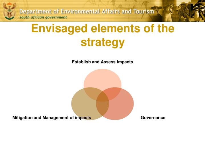 Envisaged elements of the strategy