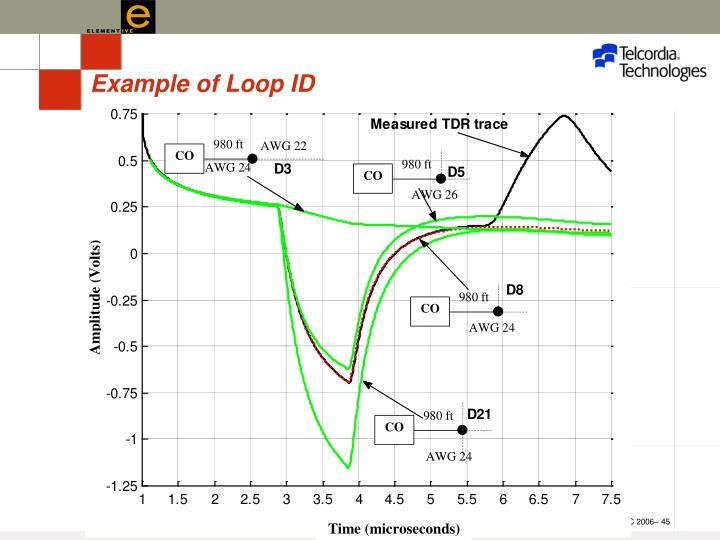Example of Loop ID