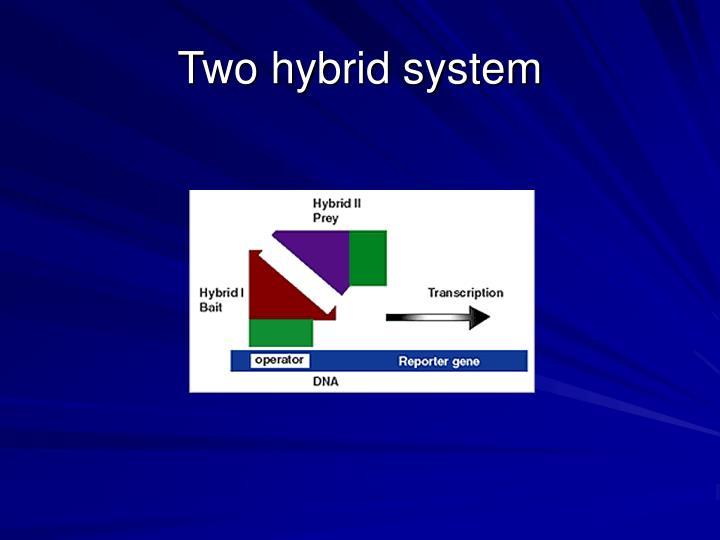 Two hybrid system