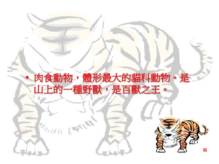肉食動物,體形最大的貓科動物。是山上的一種野獸,是百獸之王。