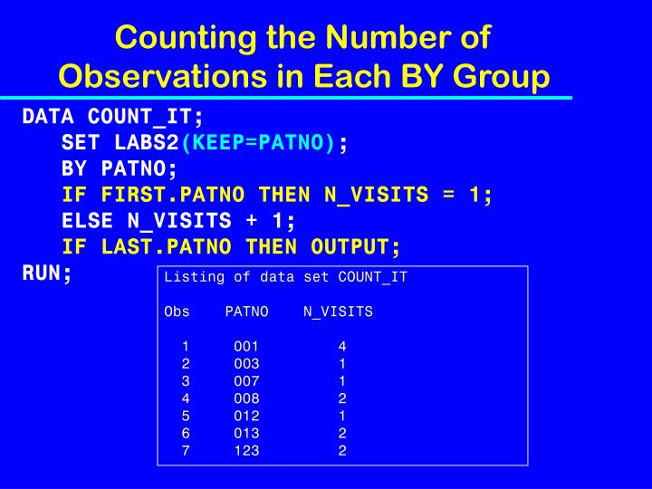 Counting the Number of Observations in Each BY Group