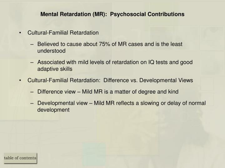 Mental Retardation (MR):  Psychosocial Contributions