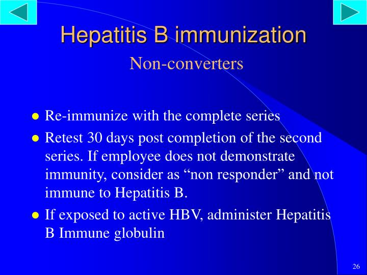 Hepatitis B immunization