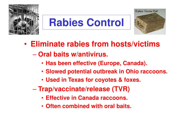 Rabies Control