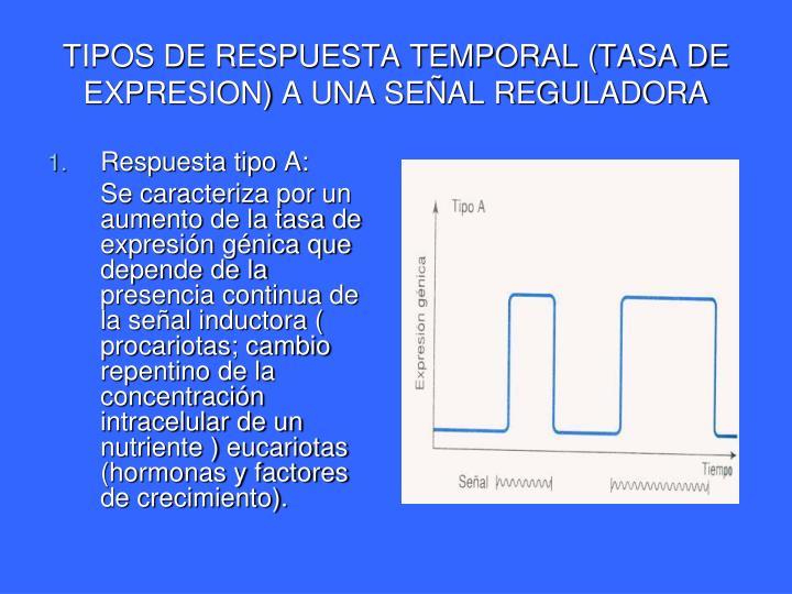 TIPOS DE RESPUESTA TEMPORAL (TASA DE EXPRESION) A UNA SEÑAL REGULADORA