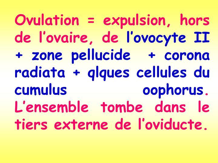 Ovulation = expulsion, hors de l'ovaire, de
